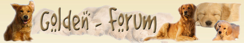 Il Forum del GOLDEN RETRIEVER